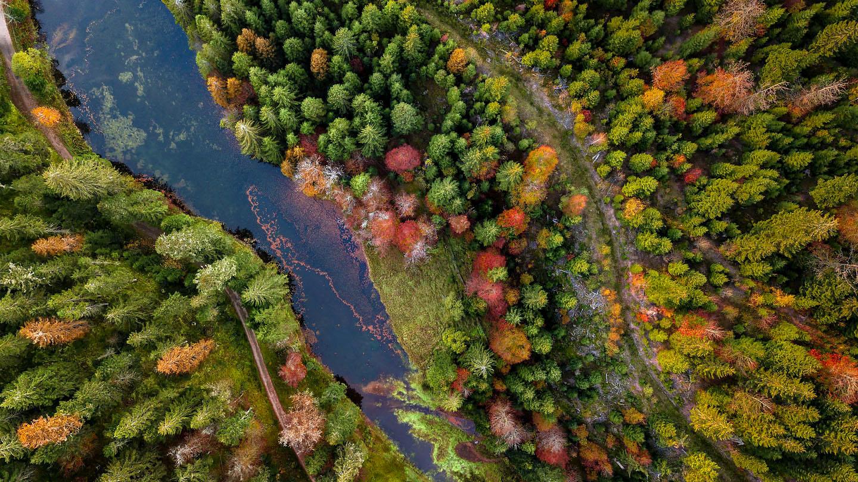 Photographie de paysage par drone - Hautes Vosges
